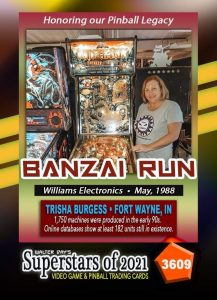 Wizards Worlds Fort Wayne Pinball Playing Cards